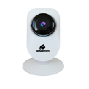 Camera IP RDS IP301